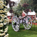 Ooty Flower Show 2018 at Botanical Garden