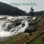 A trip to Pykara Waterfalls, Kamaraj Sagar Dam and Ooty Lake